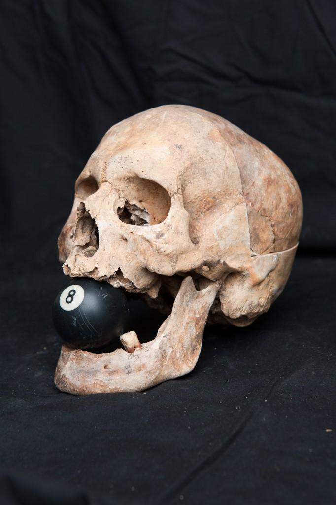 skull-49